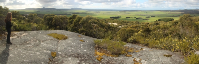 Panorama from Furneaux Lookout
